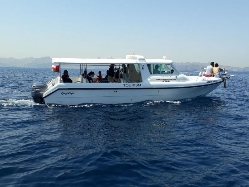 Dolphin Watching Muscat